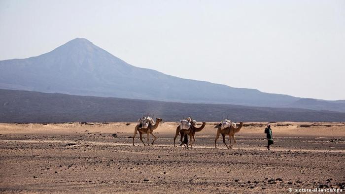 Äthiopien Landschaft in Provinz Afar Kamele durch die Wüste