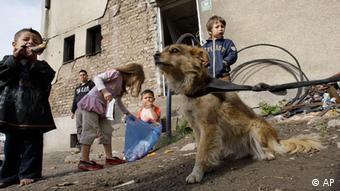 Bosnien Sinti und Roma Kinder in Sarajevo