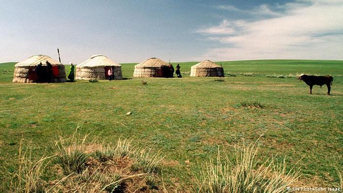 Yurts on a meadow