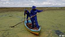 People clean the polluted bay of Lake Titicaca in Pajchiri, Bolivia, Wednesday, Nov. 19, 2008. Thousands of people living on the shores of Lake Titicaca, the highest in the world, are threatened by the lake's polluted waters. (ddp images/AP Photo/Juan Karita)