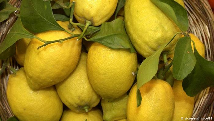 A box of lemons (photo: Fruit Logistica)