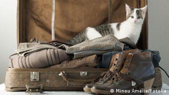 Открытый чемодан с вещами - мимвол переезда