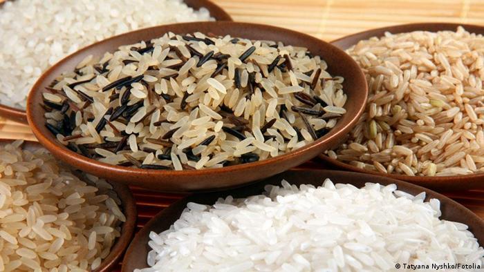Pratos com diferentes tipos de arroz