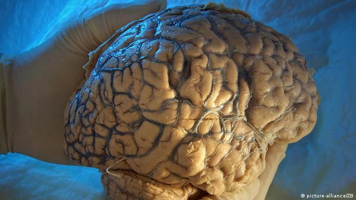 Изследванията на човешкия мозък са много напреднали. Но всичко ли е позволено?