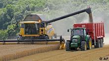 Maehdrescher ernten am Donnerstag, 16. Juli 2009, bei Toettelstaedt, Thueringen, Wintergerste. Die derzeitigen Wetterkapriolen belasten die Landwirtschaft zwar, doch gravierende Schaeden sind bisher nicht zu verzeichnen. In Deutschland wurde bis zu zwei Wochen frueher als sonst mit der Getreideernte begonnen, wie der Deutsche Bauernverband (DBV) mitteilt. (AP Photo/Jens Meyer) ** zu unserem Korr. ** --- Farmers harvest winter barley at a field near Toettelstaedt, central Germany, on Thursday, July 16, 2009. (AP Photo/Jens Meyer)