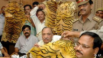 Customs officials display seized tiger skins