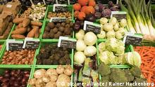 Bio Food Obst Gemüse Regal Bioladen