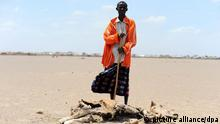 ©PHOTOPQR/LE PARISIEN/YANN FOREIX / DJERBA TULLA/ KENYA/ DES KENYANS OBSERVENT LEURS TROUPEAUX DECIMES PAR LA SECHERESSE DANS LA REGION ARIDE DE SERICHO AU NORD DU KENYA AFRIQUE LE 25 AOUT 2011 A Region in Crisis Garbatulla was once a luscious land of green pastures bursting with grazing cattle. Now, as the worst drought in 60 years grips the Horn of Africa, the stunning scenery of the Kenyan region, one of the worst affected areas, has been replaced with dry, arid land. Kenya is experiencing its worst drought in more than 60 years, with 3.5 million people in urgent need of assistance. Garbatulla is one of the most affected areas of the drought. The once luscious land is now barren and strewn with the carcasses of dead cattle, which are the only means of food and income for thousands of families. Many communities have lost up to 90% of their herd and the next harvest is not expected until February or March 2012. One in five children in the region is at risk of malnutrition.