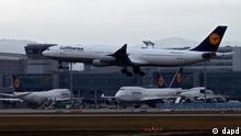 Hessen/ Eine Flugzeug der Fluggesellschaft Lufthansa landet am Freitag (17.02.12) auf dem von der Fraport AG betriebenen Flughafen in Frankfurt am Main waehrend eines Streiks der Vorfeldbeschaeftigten. Die Beschaeftigten auf dem Vorfeld des Frankfurter Flughafens haben seit Donnerstag (16.02.12) nach einem Aufruf der Gewerkschaft der Flugsicherung (GdF) die Arbeit niedergelegt. (zu dapd-Text) Foto: Mario Vedder/dapd
