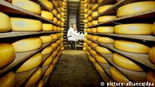 Gouda cheeses Copyright picture-alliance/dpa