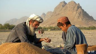 Afghanistan Landwirtschaft