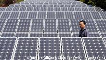 --FILE-- A Chinese man walks amid solar panels at a solar power facility in Wuhan city, central Chinas Hubei province, March 19, 2010. The focus of solar farm developments is shifting and North America and the Asia-Pacific are set to surpass Europe - the traditional front runner of clean energy adoption - as the areas of fastest-growing solar power installations. According to a Merrill Lynch report, China, India, Japan and South Korea are together projected to have 6,300 megawatts (MW) of solar panel installations by 2012, up almost tenfold from 650 MW last year. China alone is forecast to show 20-fold growth in installations to 4,000 MW, while the US and Canada are projected to see their combined solar panel installations surge eightfold to 4,400 MW from 550 MW.