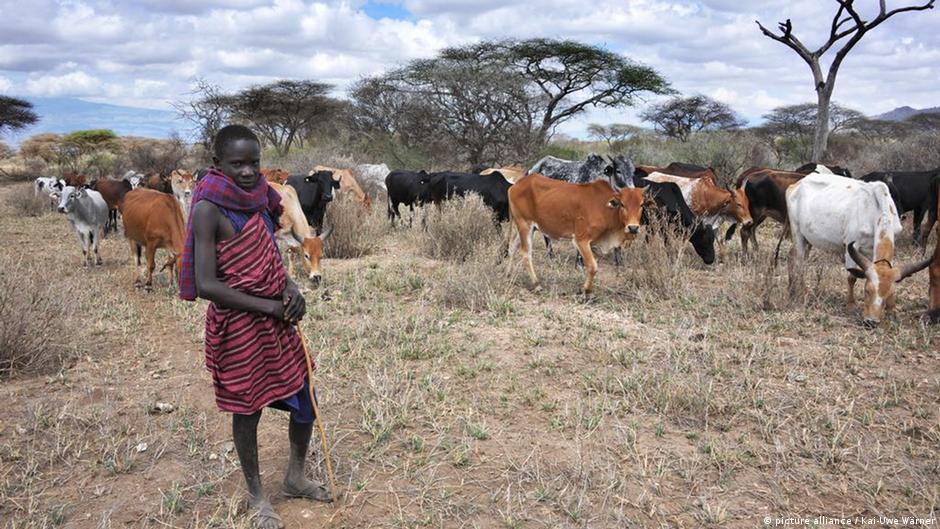 Technology to change village life