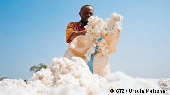 Packing cotton in a big sack(Photo: GIZ)