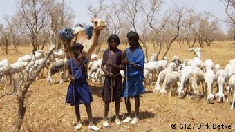 Three children lead a flock of sheep over parched earth (Photo: GIZ)
