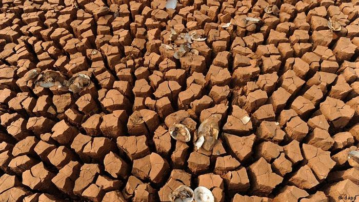 dried-up pond in China due to drought, March 2010