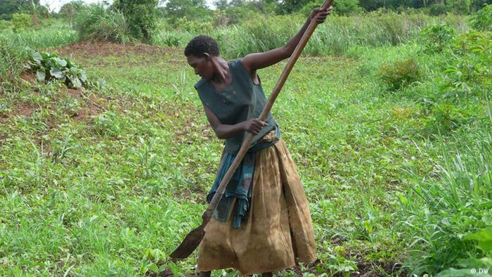 A woman works the field in Uganda