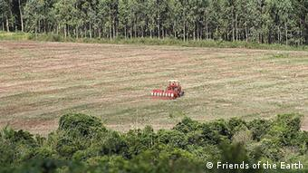 Soja-Plantage in Paraguay (Foto: Friends of the Earth)