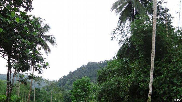 Yô Grande - O país insular é famoso pelo verde da paisagem