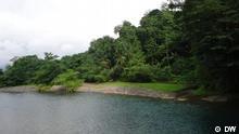 Grüne Natur von São Tomé