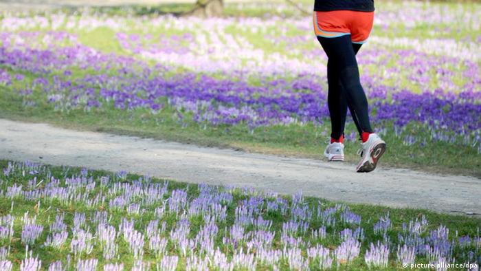 Die Beine einer Joggerin sind am Dienstag (06.03.2012) zwischen blühenden Krokussen in einem Kieler Park zu sehen. Bei Temperaturen knapp über dem Gefrierpunkt künden die Blumen vom herannahenden Frühling. Foto: Carsten Rehder dpa/lno +++(c) dpa - Bildfunk+++