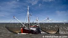 #19236169 Symbolbild Fischfang Fischkutter Schiff