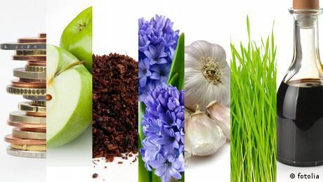 صورة رمزية لبعض المواد الغذائية المفيدة