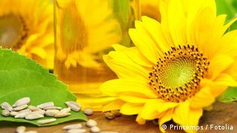 Соняшникова олія - джерело вітаміну Е