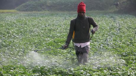 Landwirtschaft in Asien