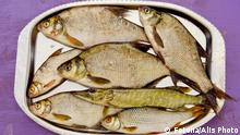 مصرف ماهی برای سلامت قلب مفید است