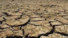 Trocken / Trockenheit / Dürre / Klimawandel / Symbolbild