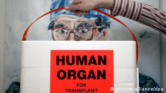 A cool box for carrying organs (c) dpa - Bildfunk+++