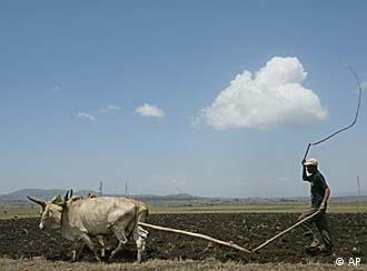 Kleinbauer in Äthiopien (Foto: AP)