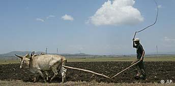 Bauer bei der Arbeit in Äthiopien