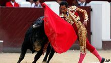 Colombia's bullfighter Luis Bolivar passes his cape over a bull during a bullfight at the Santamaria bullring in Bogota, Colombia, Sunday Jan. 23, 2010. (ddp images/AP Photo/Fernando Vergara)