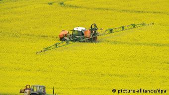 ARCHIV - Ein Traktor spritzt am 26.04.2011 bei Glauburg (Wetterau) Pflanzenschutzmittel auf ein Feld mit Winterraps. Vor dem Hintergrund der wachsenden Weltbevölkerung setzt der Chemiekonzern BASF milliardenschwere Hoffnungen in das Geschäft mit Pflanzenschutzmitteln. Der Umsatz mit Unkraut-, Pilz- und Schädlingsbekämpfung solle bis zum Jahr 2020 auf sechs Milliarden Euro ansteigen. Die Produkte des Konzerns sollen bisher vor allem die Erträge der Bauern erhöhen. Künftig soll auch die Umweltverträglichkeit mehr in den Fokus rücken. Foto: Arne Dedert dpa/lhe (zu dpa 0404 vom 08.11.2011) +++(c) dpa - Bildfunk+++