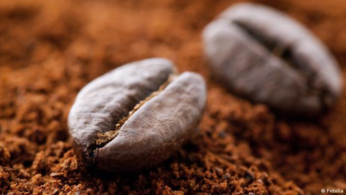 Kaffeebohnen auf Kaffeepulver © HLPhoto #25145266