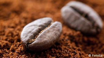 Symbolbild Kaffee Fairtrade Kaffeebohne