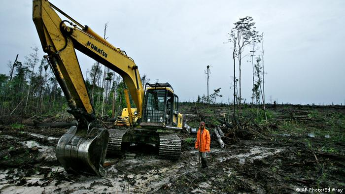 An Indonesian plantation worker stands next to his back hoe being used to knock down trees to make way for a palm oil plantation on Saturday, June 9, 2007, in Tumbang Kuling, Kalimantan, Indonesia. (Photo:Ed Wray/AP)