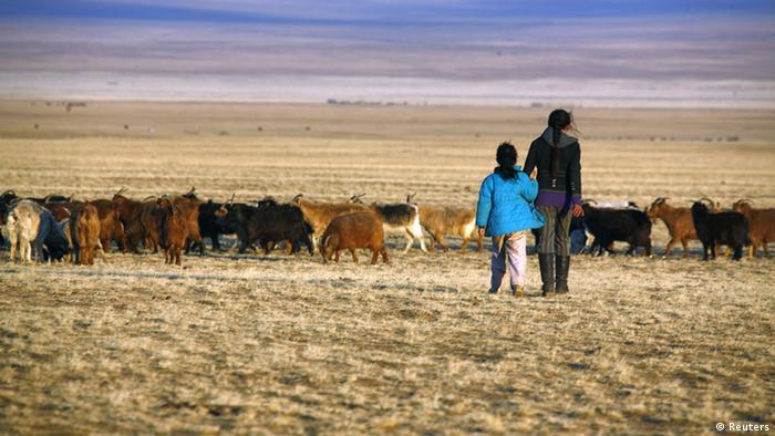 Mongolian nomades