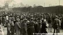 Auschwitz-Birkenau 1944 Ankunft Juden