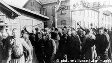 Auschwitz-Birkenau 1945 Befreiung Häftlinge Jubel