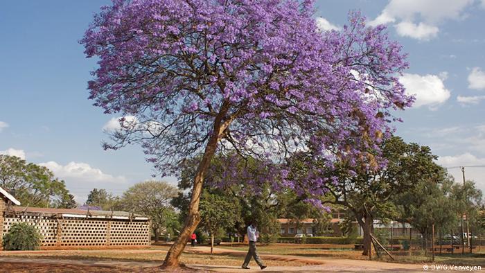 site de rencontre au Kenya gratuitement