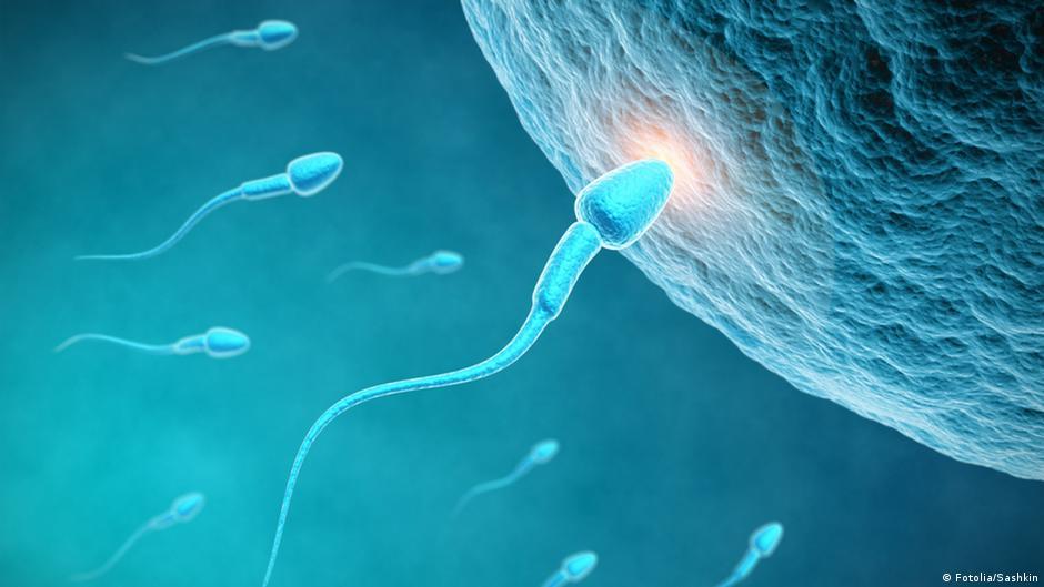 kak-povisit-podvizhnost-spermotozoydov