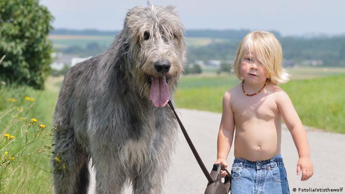 Kind mit Hund (Fotolia/otisthewolf)