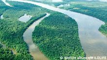 Народи, що живуть уздовж Амазонки, не однакові