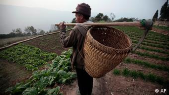 Von Chinesen bearbeitete Farm (Foto: AP)