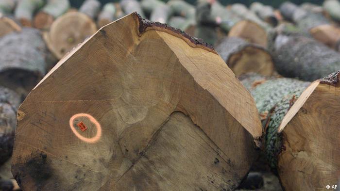 Marca da FSC garante que a madeira teve manejo adequado