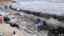 Japan Fukushima Tsunami trifft AKW Welle