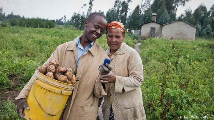 M-Farm Preisinformationssystem in Kenia